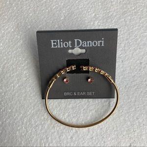 Eliot Danori bracelet & earrings set